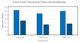 Water Quality Testing Results