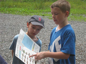 children look at pictures of what is in the creek