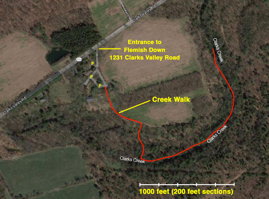 The CCWPA creek walk in June 2019